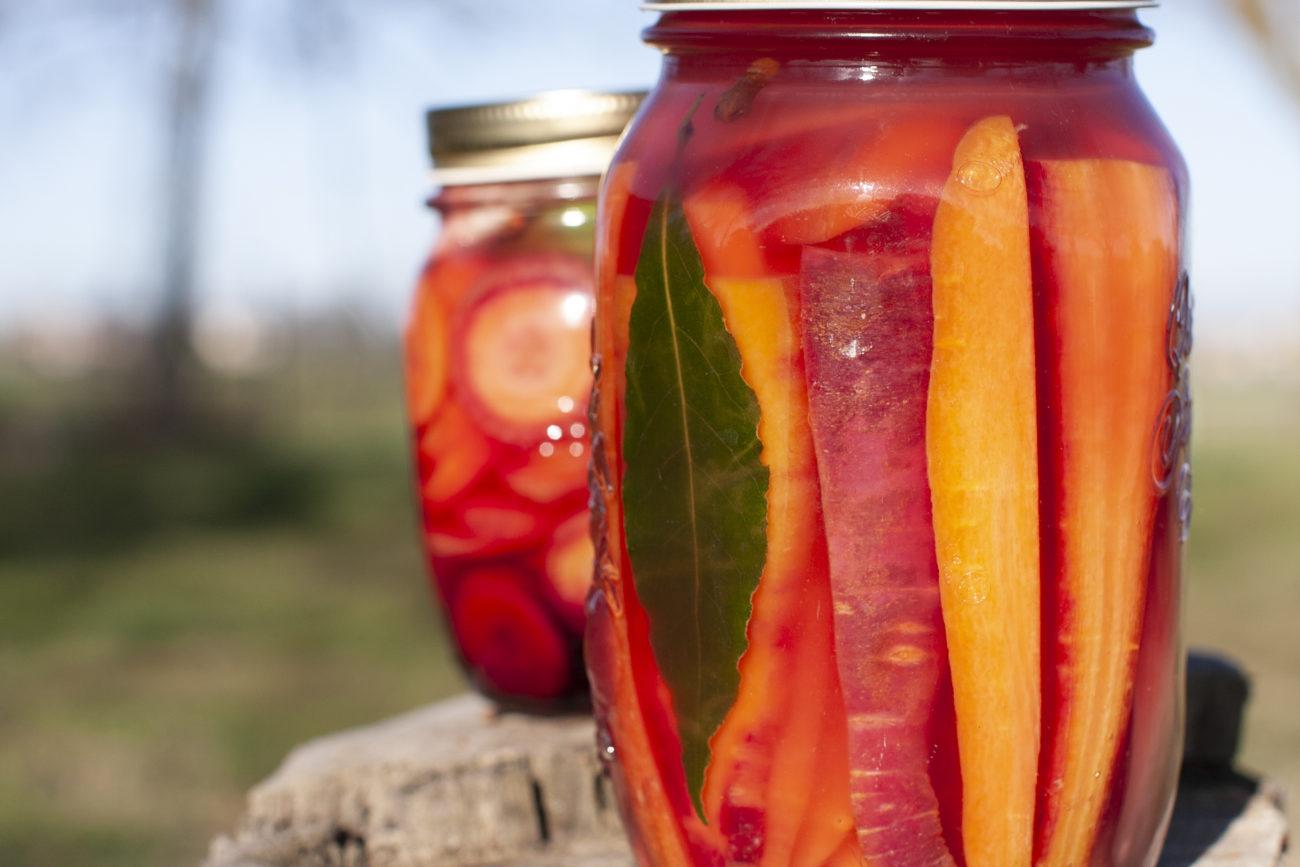 Carote fermentate